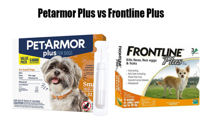 Petarmor Plus vs Frontline Plus