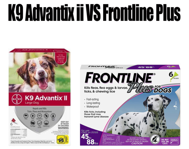 K9 Advantix II vs Frontline Plus
